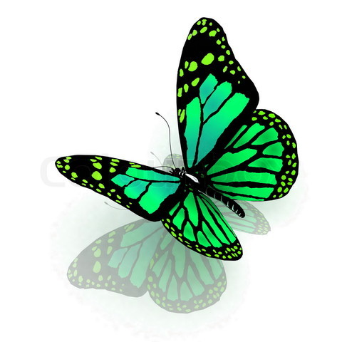 Schmetterlinge zum Frühjahresbeginn